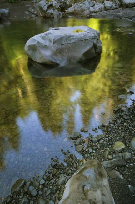 Reflections in Sol Duc River, Olympic National Park, Washington, USA