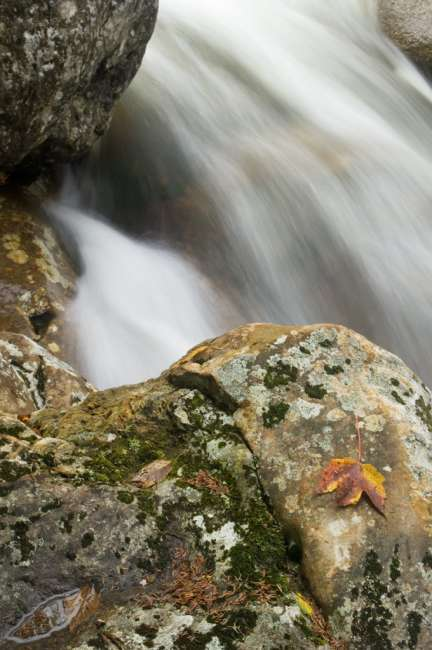 Waterfalls along 19-Mile trail, The White Mountains National Forest, New Hampshire