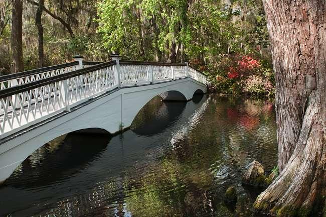 Charleston, South Carolina, USA.  A bridge in Magnolia Gardens.